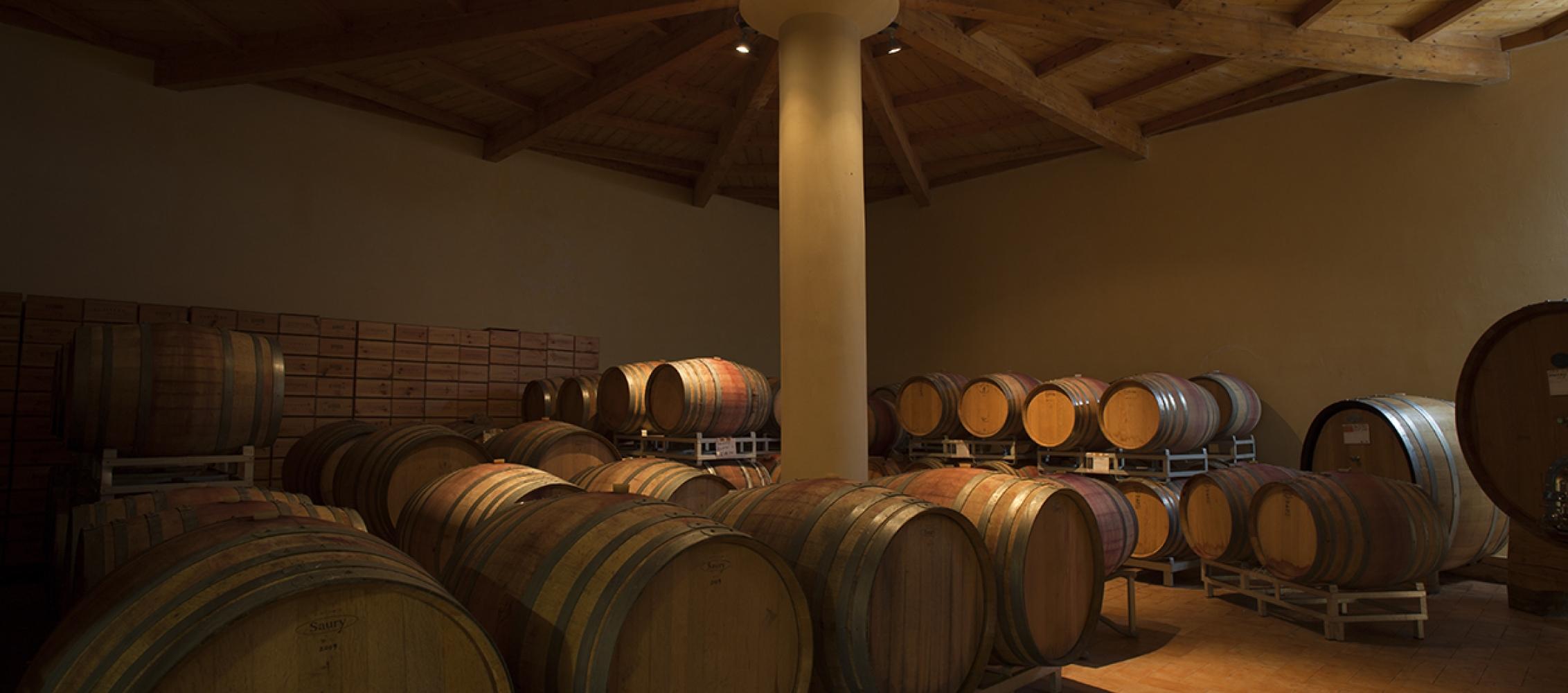 Col di bacche - produzione e vendita vini maremmani : interno della cantina con le caratteristiche bottiin rovere